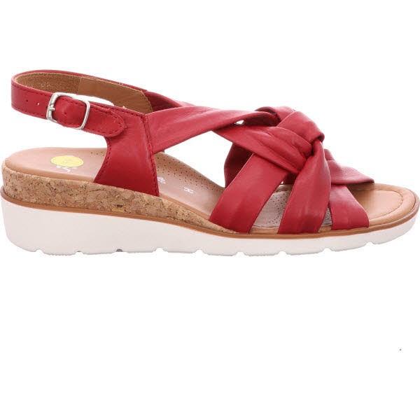 the latest a9a26 1ed90 Ara Shoes rot